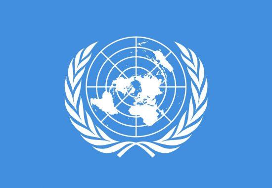 The UN logo